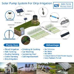 3 Solar Deep Water Well Screw Bore Pump S/Steel Submersible Farm Pond 24V 120W