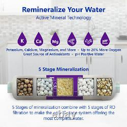 Alkaline Reverse Osmosis Water Filtration System Mineral RO with Gauge 100 GPD